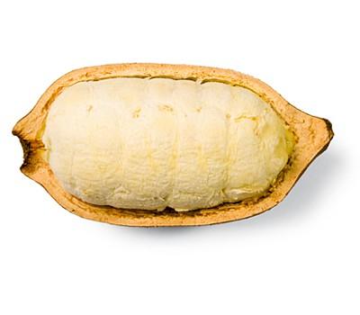Cupuacu Pulver